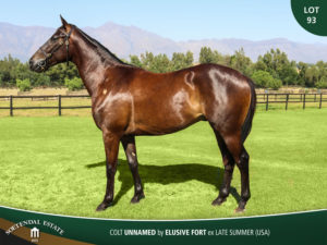 Lot-93-Colt-Unnamed-by-Elusive-Fort-ex-Late-Summer-USA